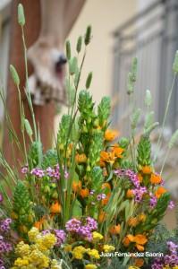 La flor 2.jpg